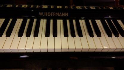 Hoffmann P126