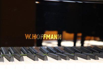 Hoffmann T177
