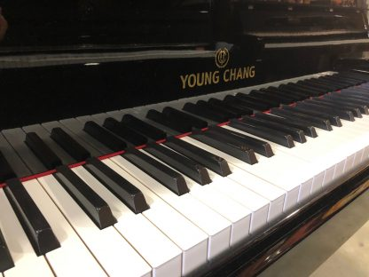 Young Chang 175